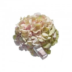 Vernis Rose Pearl