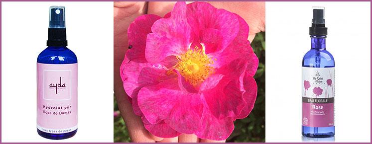 Hydrolat de Rose pur et Eau Florale de Rose